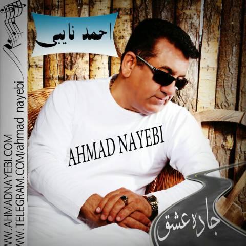 دانلود آهنگ احمد نایبی به نام جاده عشق