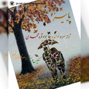 جواد قره محمدی