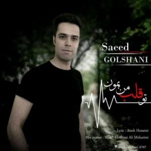 سعید گلشنی