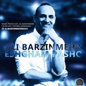 علی برزین مهر