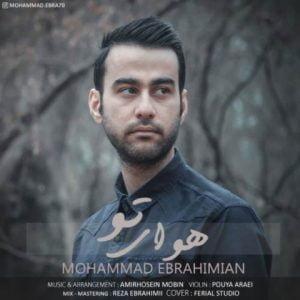دانلود آهنگ محمد ابراهیمیان به نام هوای تو