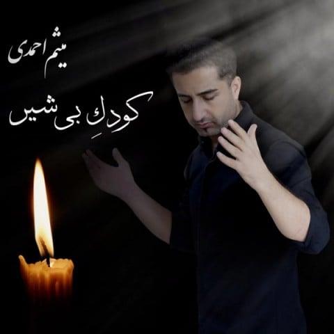 دانلود آهنگ میثم احمدی به نام کودک بی شیر