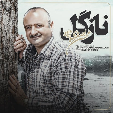 دانلود آهنگ محسن اصغری زاده به نام نازگل
