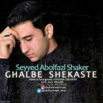 دانلود آهنگ ابوافضل شاکر به نام قلب شکسته -