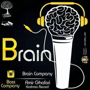 دانلود آلبوم Various Artists به نام مغز