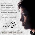 دانلود آهنگ محمد فلاح به نام عشق گم شده -