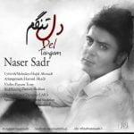 دانلود آهنگ ناصر صدر به نام دلتنگم