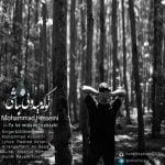 دانلود آهنگ محمد حسینی به نام تو که میدونی نباشی