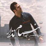 دانلود آهنگ علی شمس الهی به نام تنهام نزار